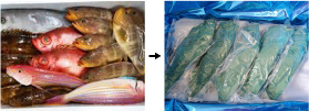 An example of fresh fish packaging